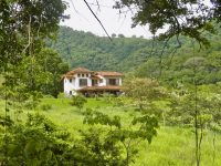 Jungle Home Costa Rica 120 Acres
